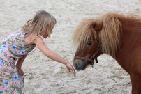 Pony Power voor Kids Afstemmen - Hoogveld Coaching